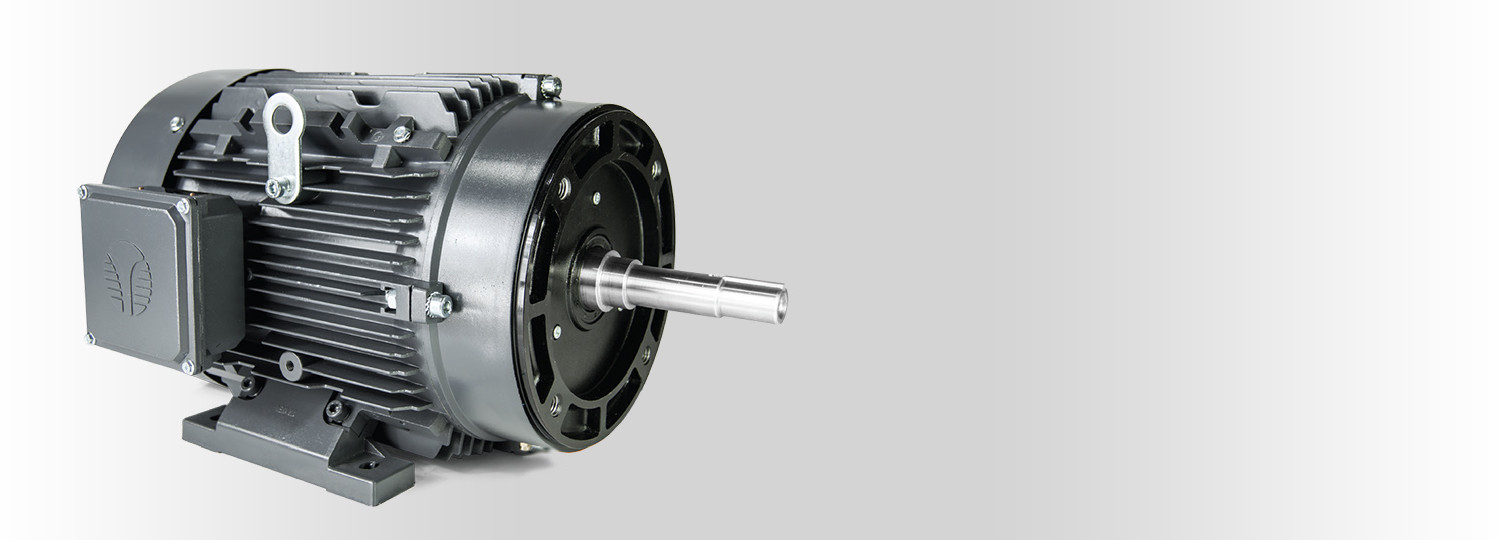 Ems Electric Motor Service Sales And Solutions